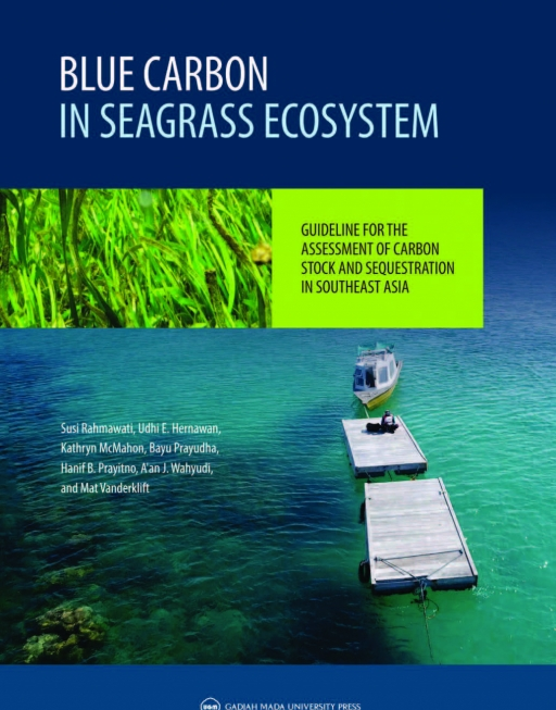 Blue Carbon In Seagrass Ecosystem